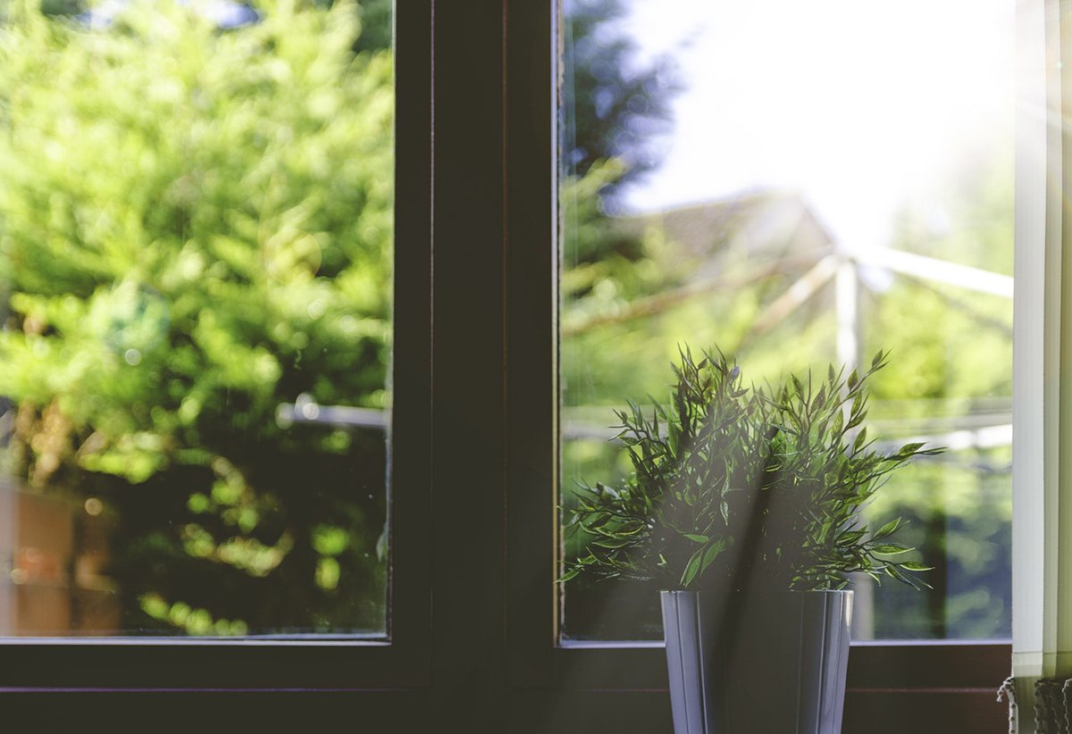 How To Maintain Your Windows During The Summertime