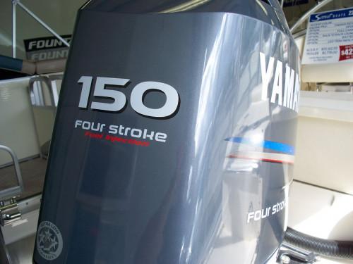 2006 SCOUT 222 DORADO