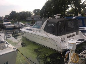1990 SEA RAY 350 SUNDANCER CRUISER W/ TWIN 7.4L MERC I/B'S