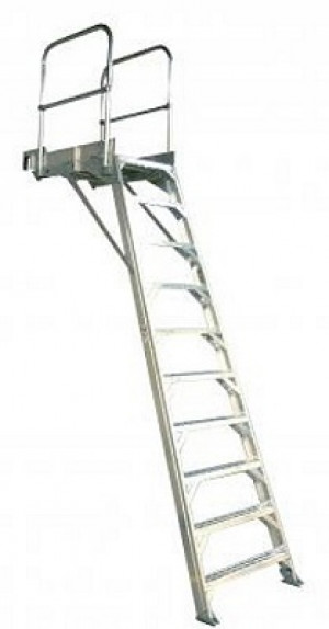 Aircraft Wheelwell Ladder