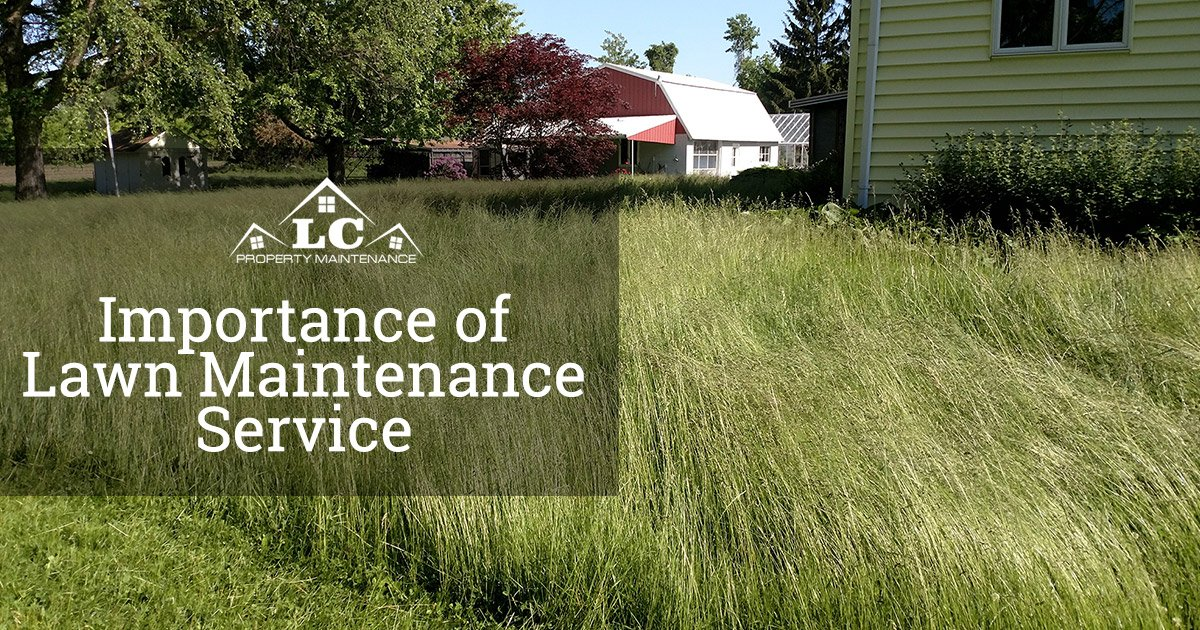 The Importance of Lawn Maintenance Service