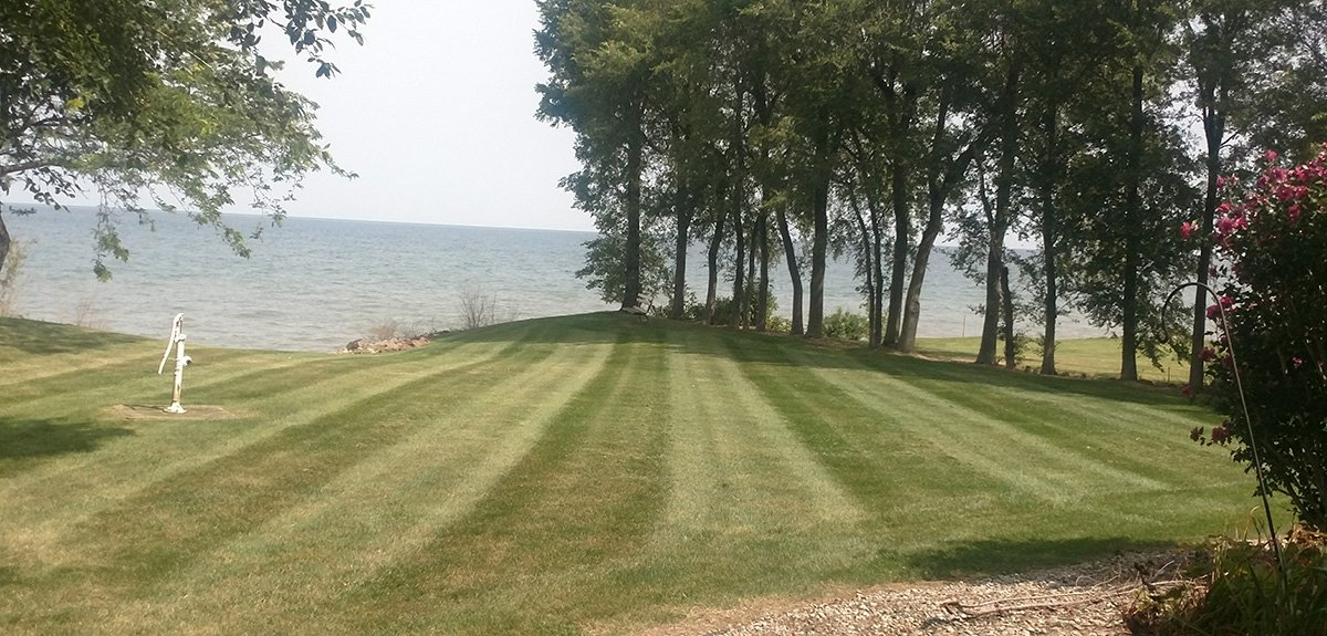 Beautifully Mowed Lawn