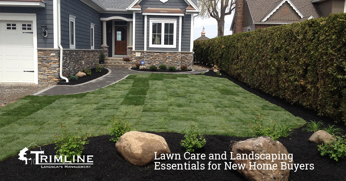 Landscape and Lawn Care Essentials for New Home Buyers