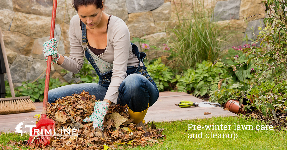 The Benefits of Pre-Winter Lawn Care and Cleanup