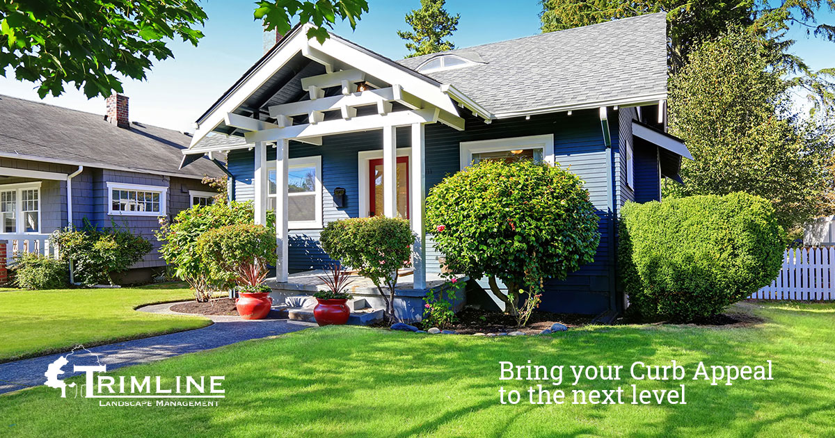 Want to Enhance your Curb Appeal, We Have you Covered!