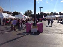 2013 Breast Cancer Walk