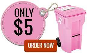 Order Pink Garbage Can in Rochester NY