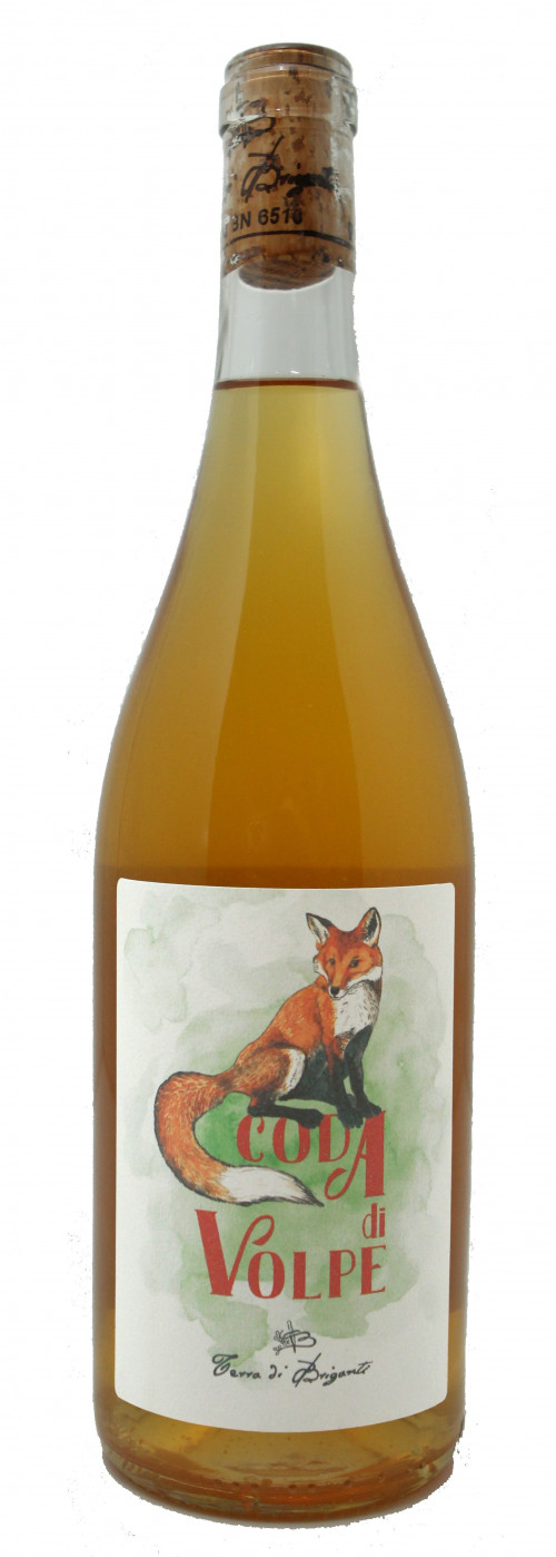 2019 Terra di Briganti Coda Di Volpe Orange Wine 750ml