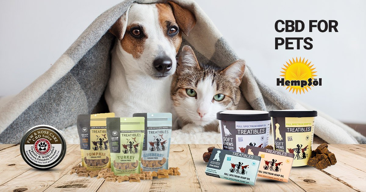 Shopping for CBD Pet Products You Can Trust
