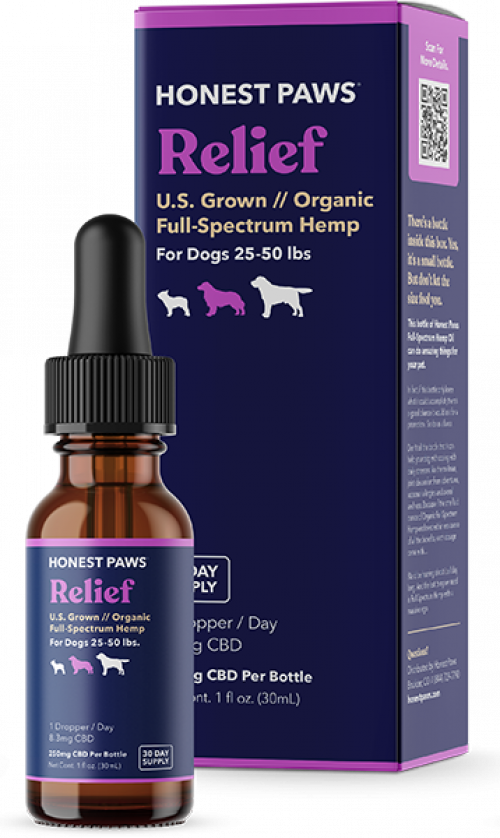 CBD Relief Oil for Dogs