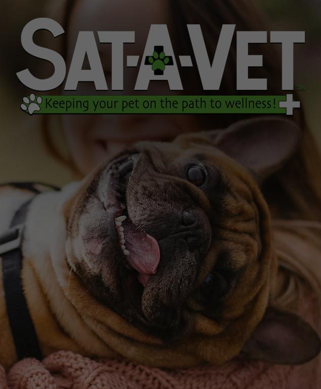 Sat-A-Vet™