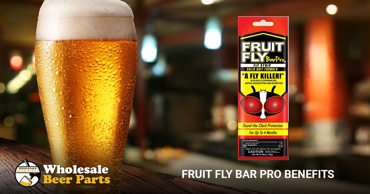 Using Fruit Fly Bar Pro to Control Pests at Restaurants and Bars
