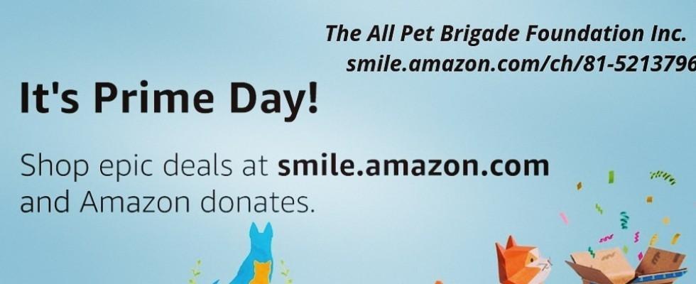Pets Of All Pet Brigade