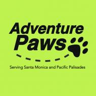 Adventure Paws