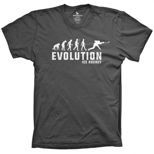 Evolution of Hockey
