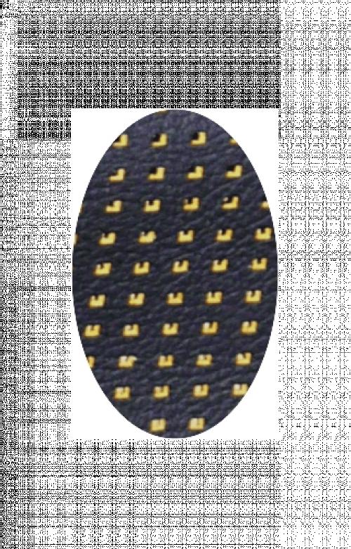 Barracuda Yellow