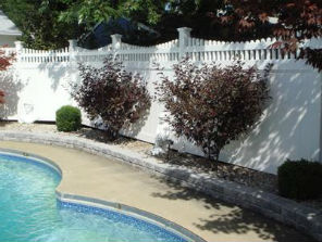 Orchard Park Pool Fencing