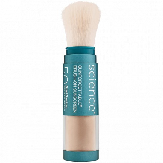 Sunforgettable Total Protection Brush-on Shield