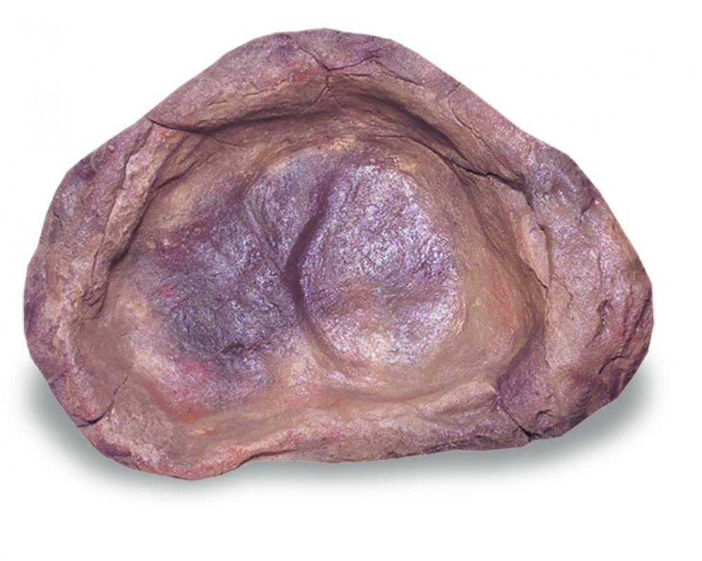 Medium Rock Pond - MRP-006