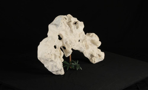 Holey Rock - Decoration Rock-043