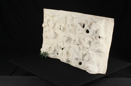 Background Holey Rock - in various sizes - WHITE ONLY