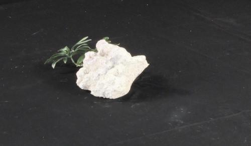 Marine Aquarium Decoration Rock - MADR-001