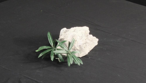 Marine Aquarium Decoration Rock - MADR-004