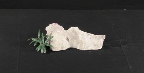 Marine Aquarium Decoration Rock - MADR-006