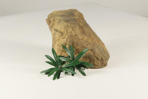 Decoration Rocks - DECOROCK-004