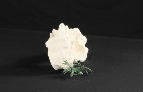 Decoration Rocks - DECOROCK-040