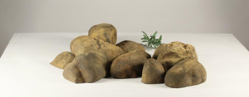 Stonecluster-001: Set of 12 river stones