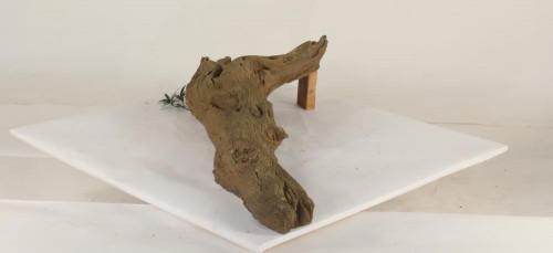 Tree Branch - TB-003