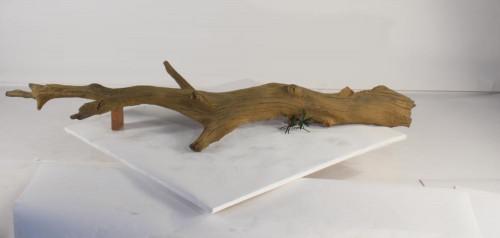 Tree Branch - TB-006