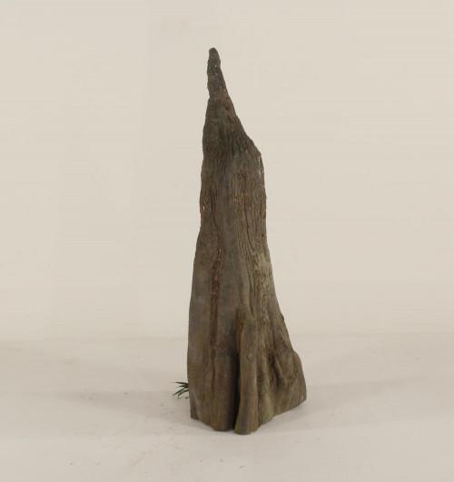 Cypress Knee - CK-008