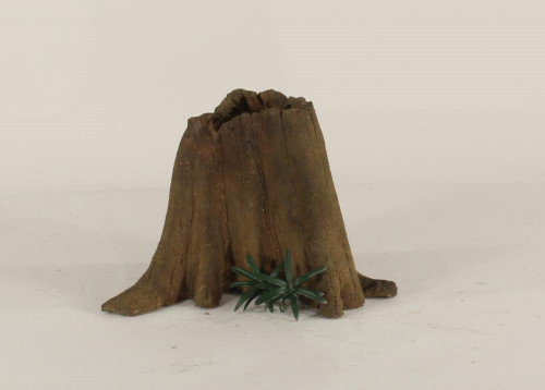 Cypress Stump - CS-001