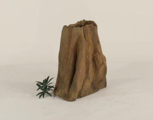 Cypress Stump - CS-002