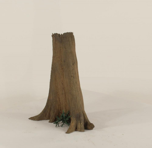 Cypress Stump - CS-003