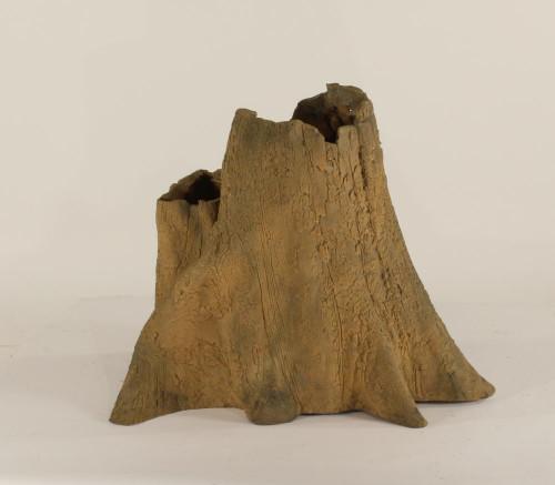 Cypress Stump - CS-004