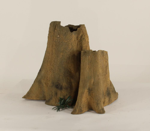 Cypress Stump - CS-004