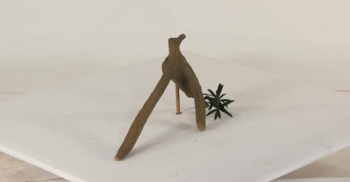 Mangrove Root - MR-001