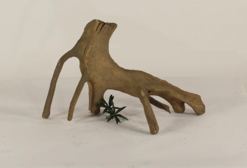 Mangrove Root - MR-003