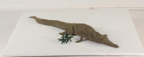 Floating - 4ft Crocodile