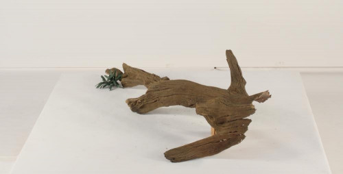 Floating Log-FL-002