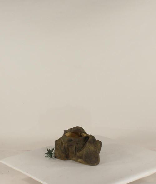 Pot Rock - 003