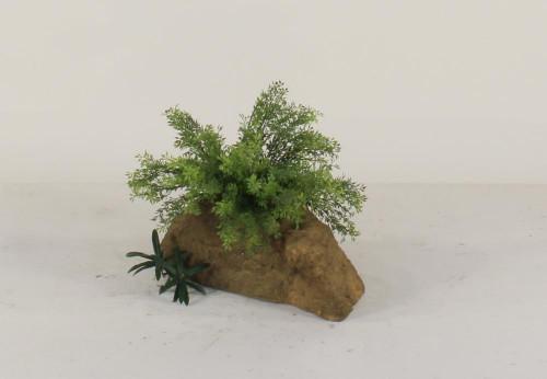 Pot Rock - 006