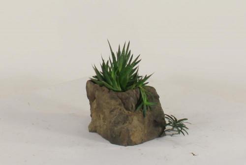 Pot Rock - 010