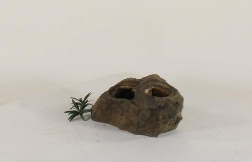 Pot Rock - 011