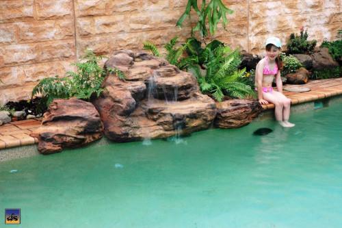 "Kits - Pool waterfall - ""Tropicana"" Complete Swimming Pool Waterfall Kit - FREE SHIPPING!"