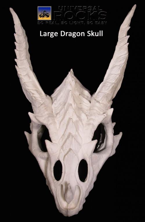 Large Dragon Skull