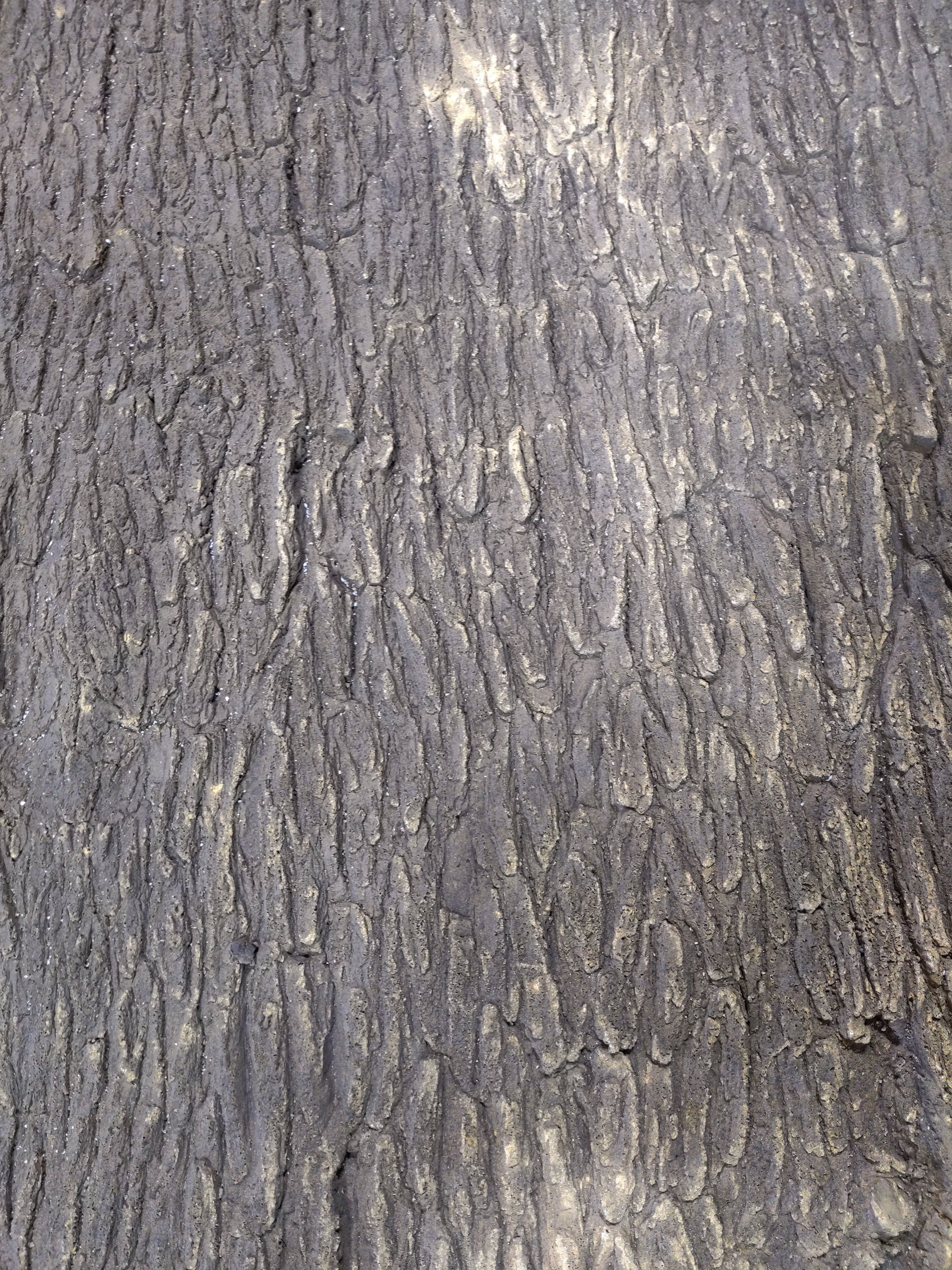 24 x 24 Bark Background (Flexible Material Only)